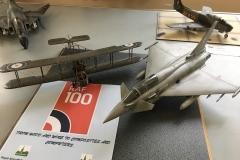 RAF 100-1