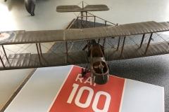 RAF 100-3